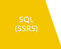 SQL Server Reporting Services (SSRS)