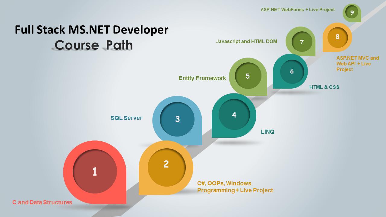 Full Stack  NET Developer